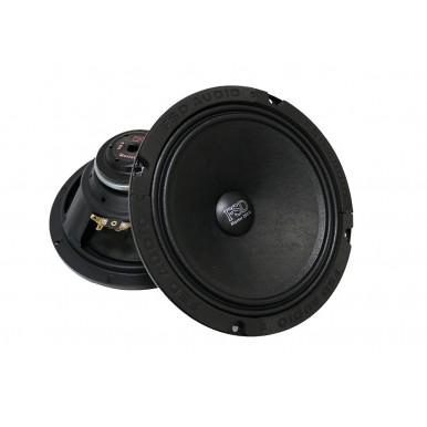 Акустическая система FSD audio Master 200N