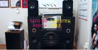 Видео обзор компонентные динамики STEG SE 650C